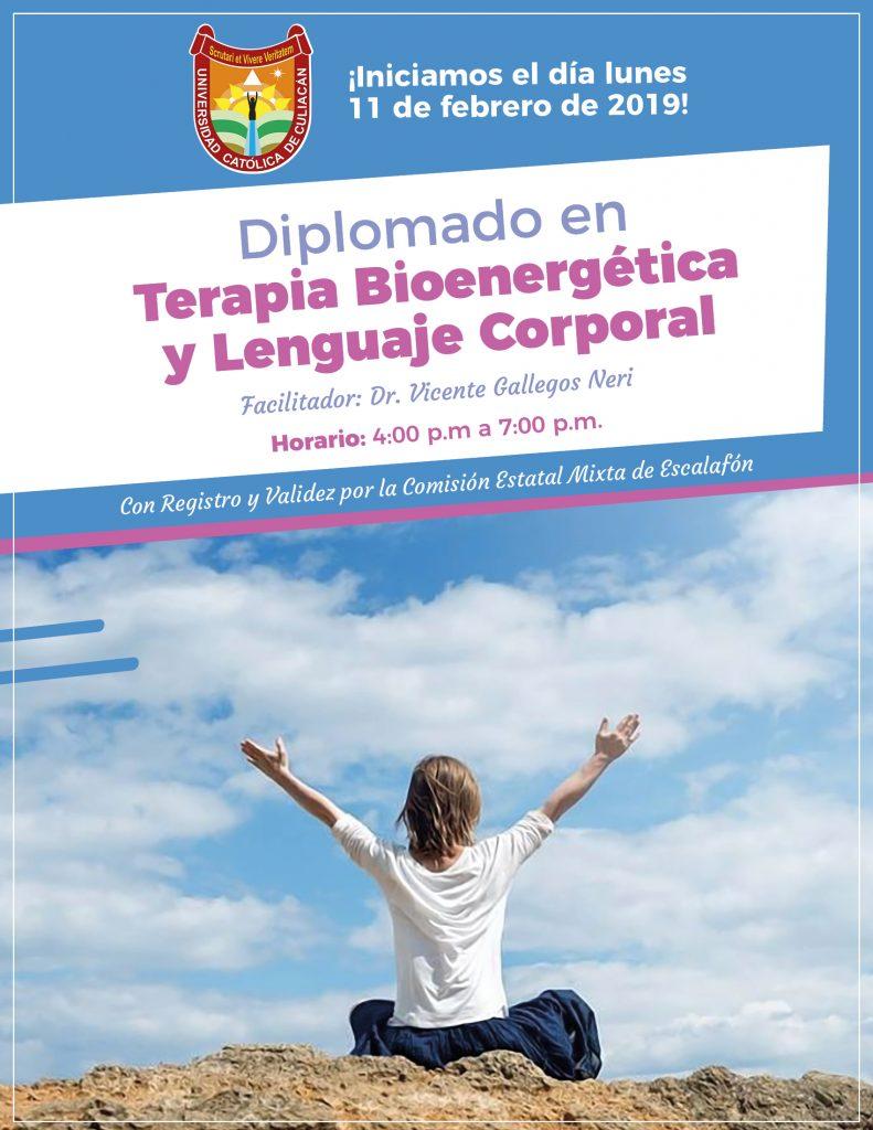 página - flyer diplomados feb 20192